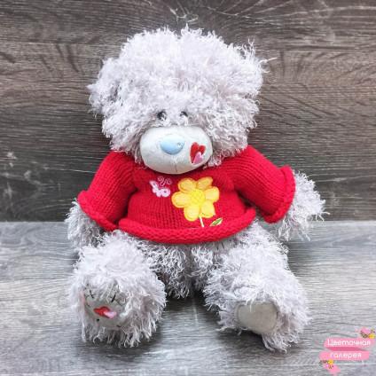 Мишка Teddy в кофте