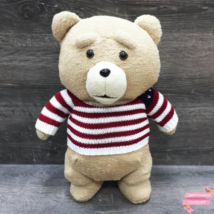TED «Третий лишний» в свитере