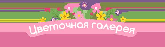 «Цветочная галерея» доставка цветов